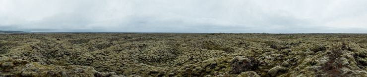 panorama of Volcanic aftermath with moss in southern Iceland