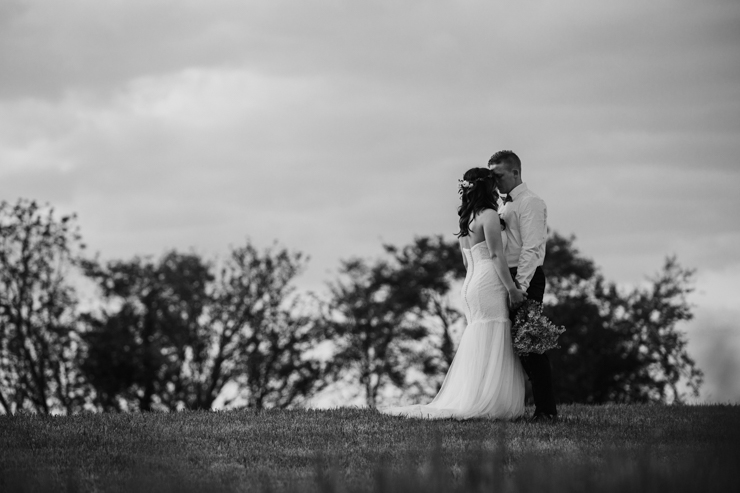 Bride and Groom's wedding portraits on childhood home's countryside hill