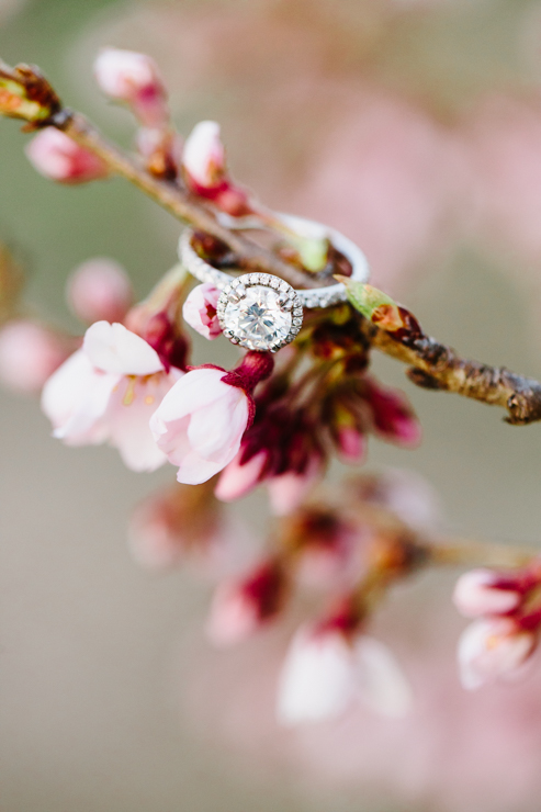 bremer jewelry diamond engagement ring detail photography