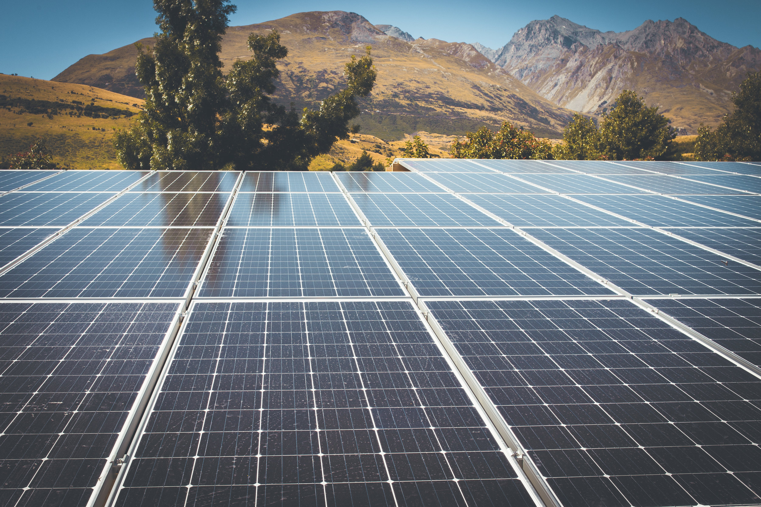 The solar garden is the South Island's largest.jpg