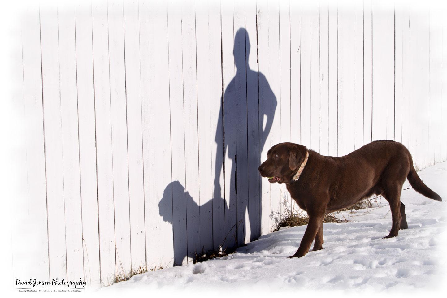 GunnerShadows.jpg