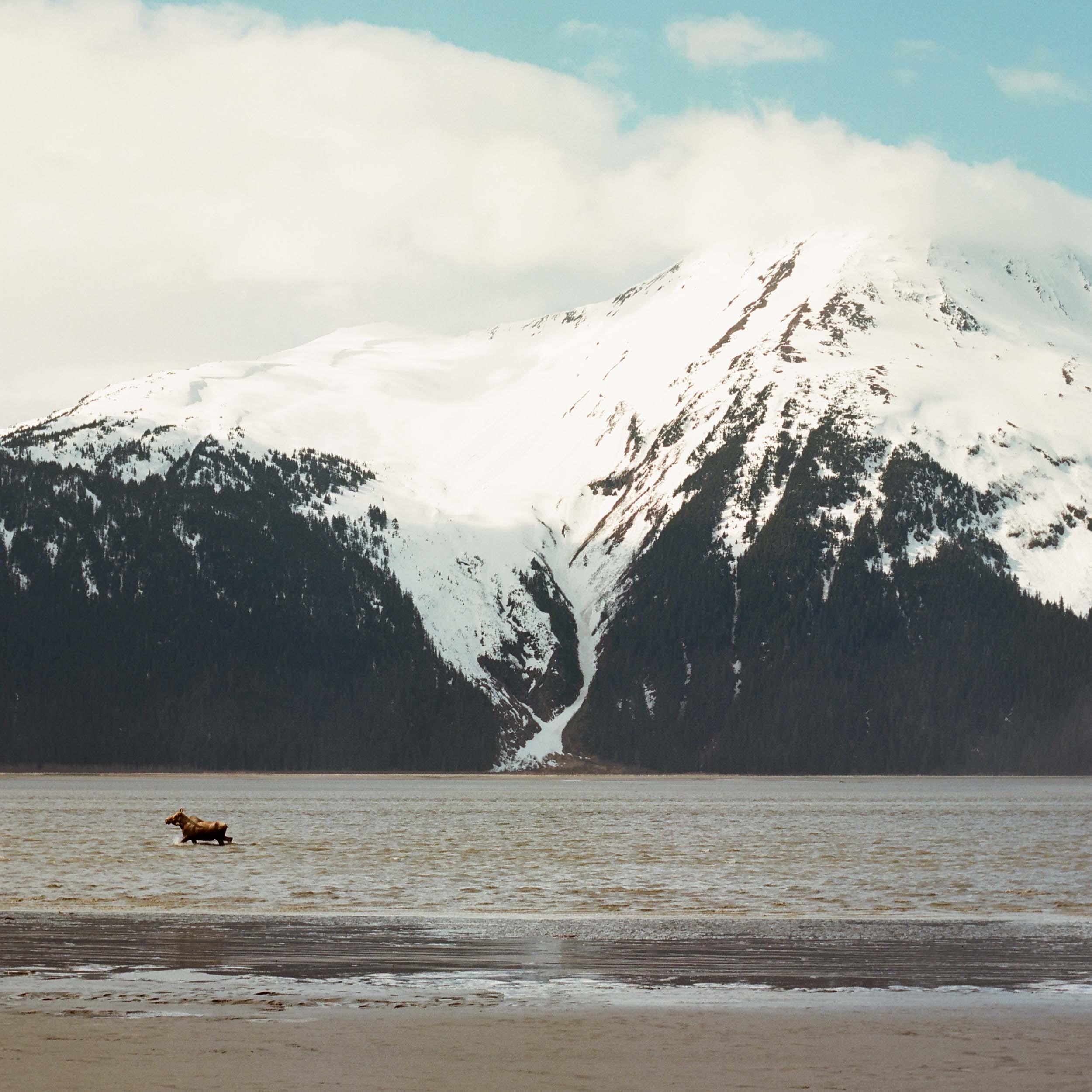 Alaskana-Collection