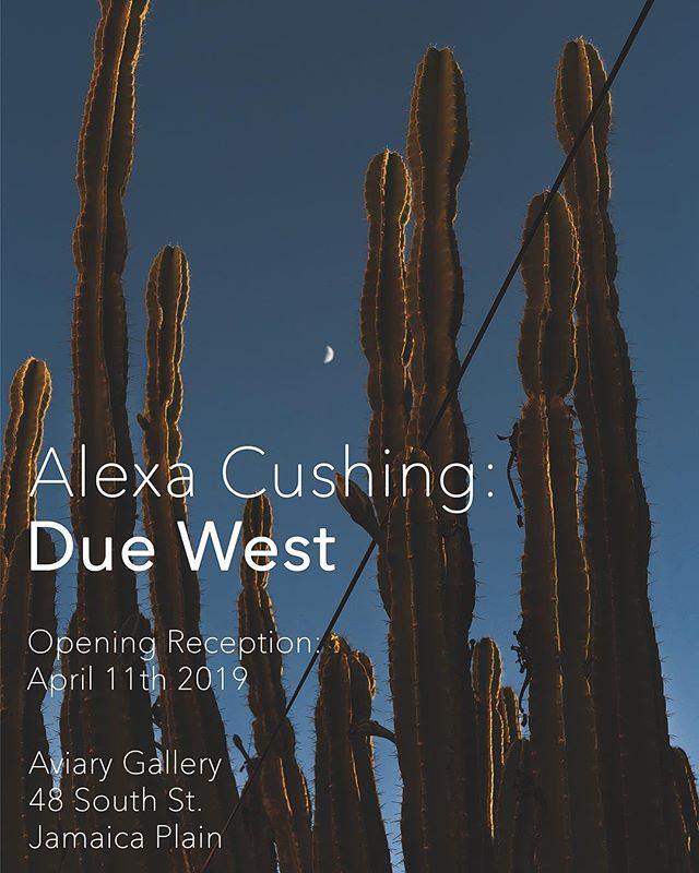 The opening for our April exhibition, Due West, is tomorrow night from 6-9!  Give your New England soul some respite through Alexa Cushing's view of the City of Angels 🍊