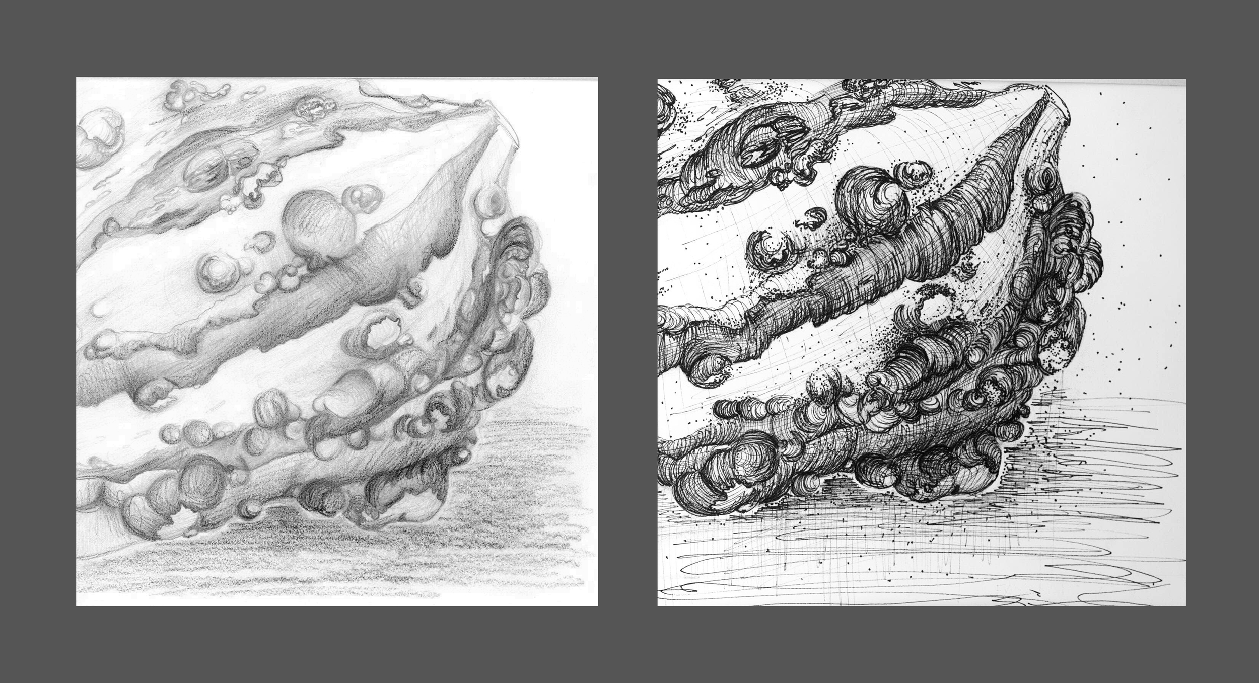 Greyscale of a Gourd   ('11)  Left:  Pencil       Right:     Pen and Ink