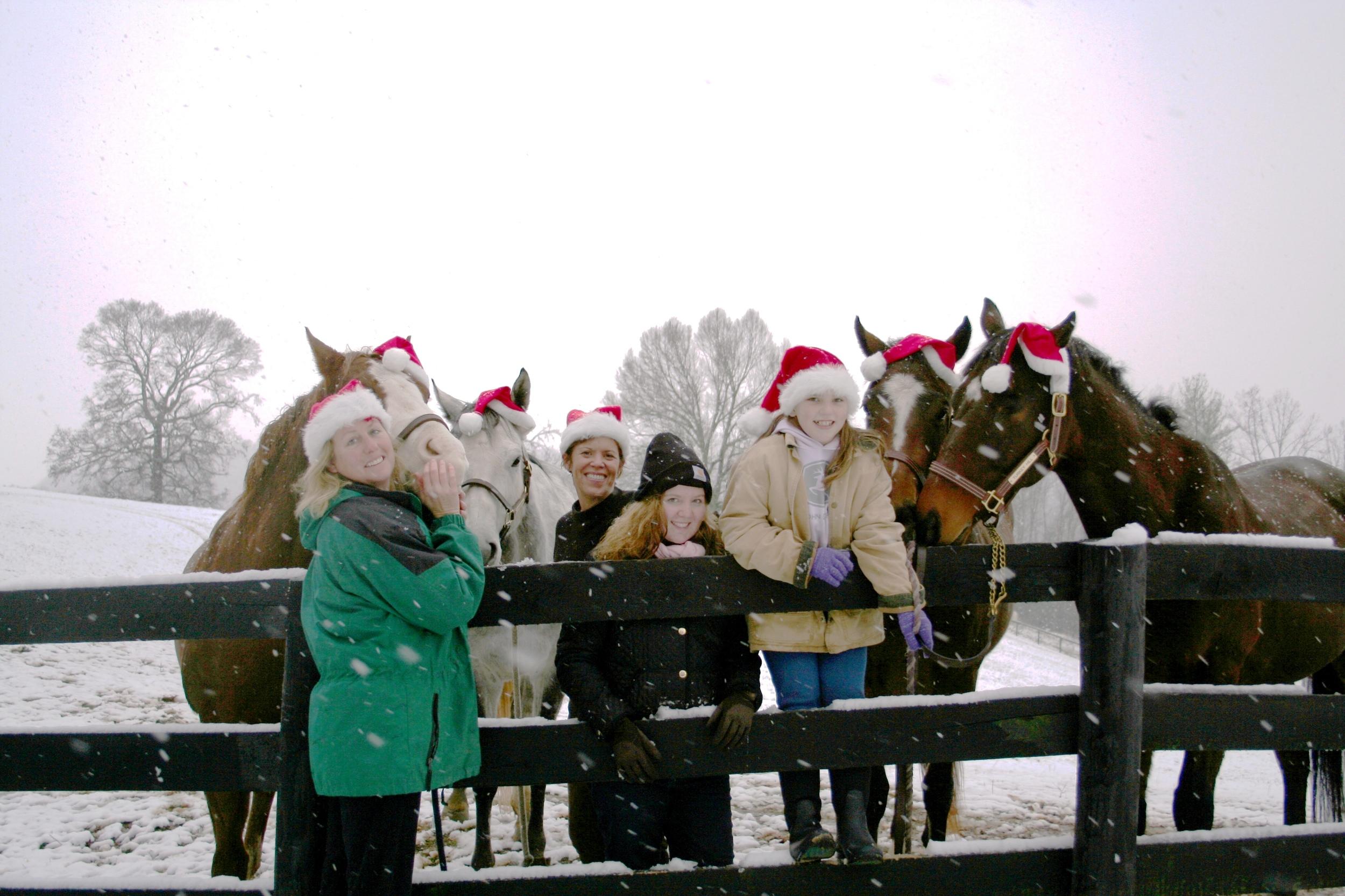 Horses with Santa hats.jpg
