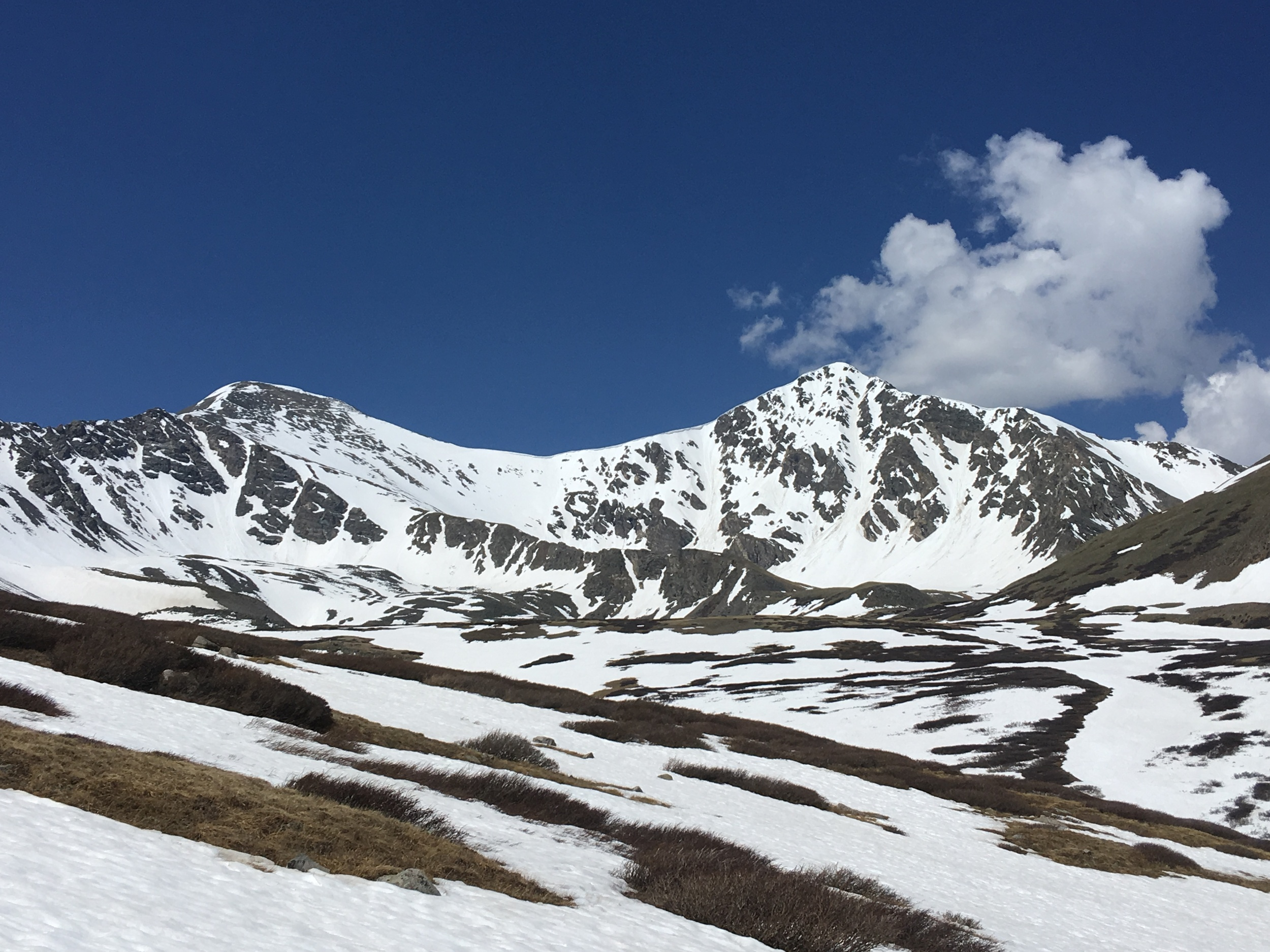 Grays (left) and Torreys Peak