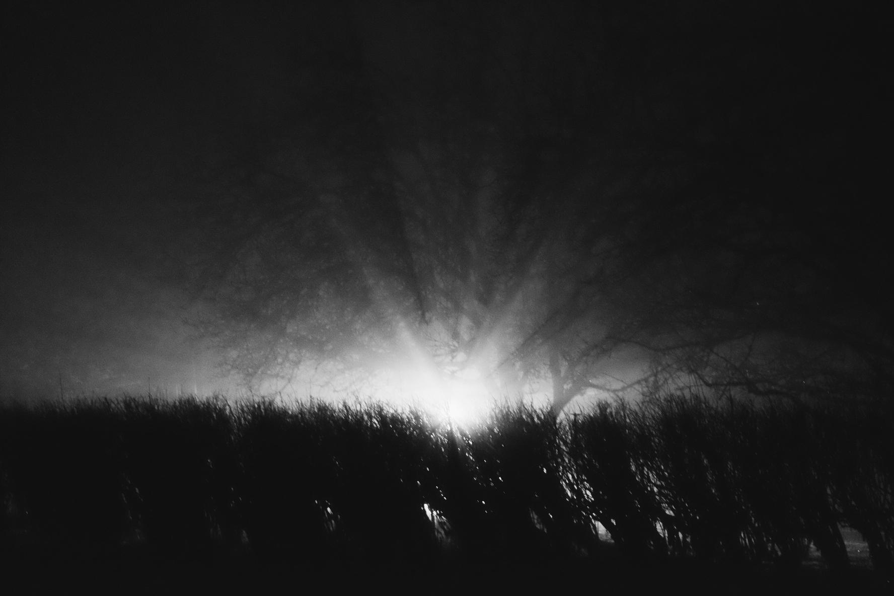 38. Fogburst