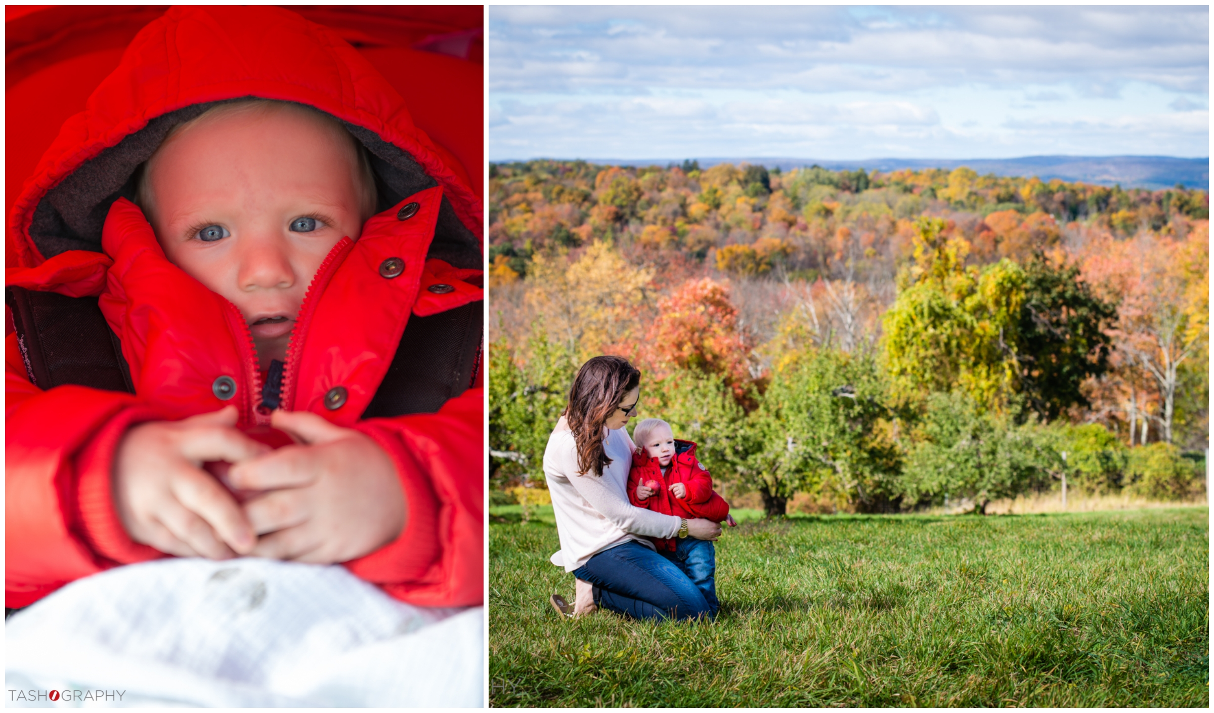 We enjoyed beautiful views at Wilkens Farm as the leaves had just started changing.