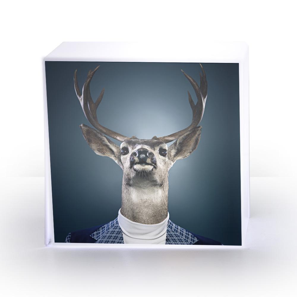 LAMPE cube cerf.jpg