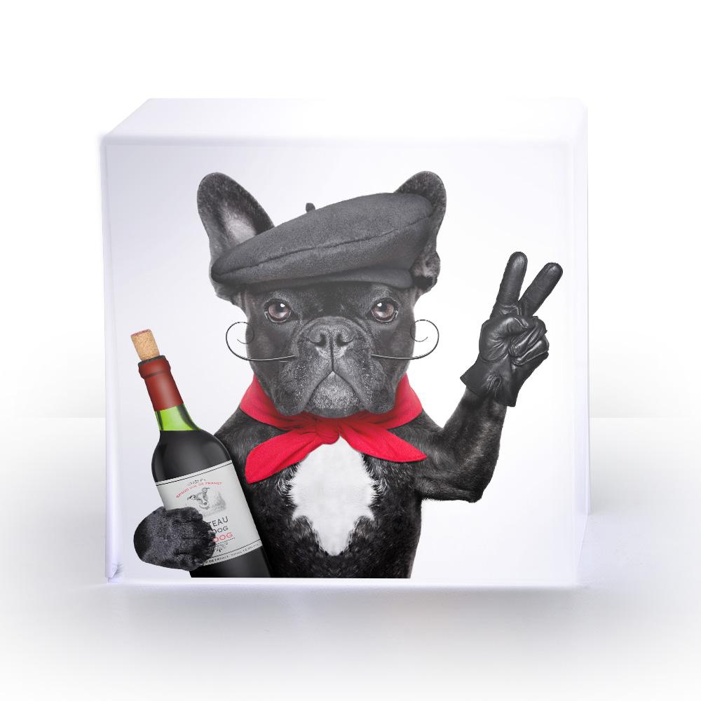 LAMPE cube dogwine.jpg