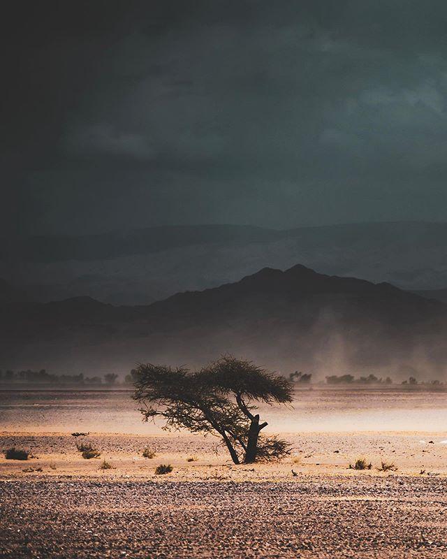 #sandstorm with @hyr0la