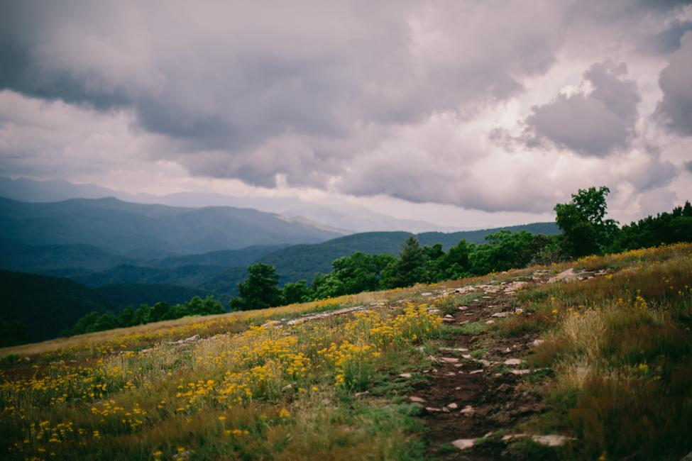 asheville-mountain-top-wedding-sam-and-ben-3.jpg