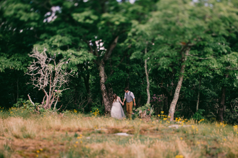 asheville-mountain-top-wedding-sam-and-ben-28.jpg