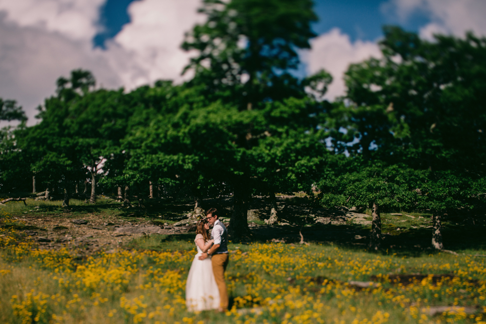asheville-mountain-top-wedding-sam-and-ben-32.jpg