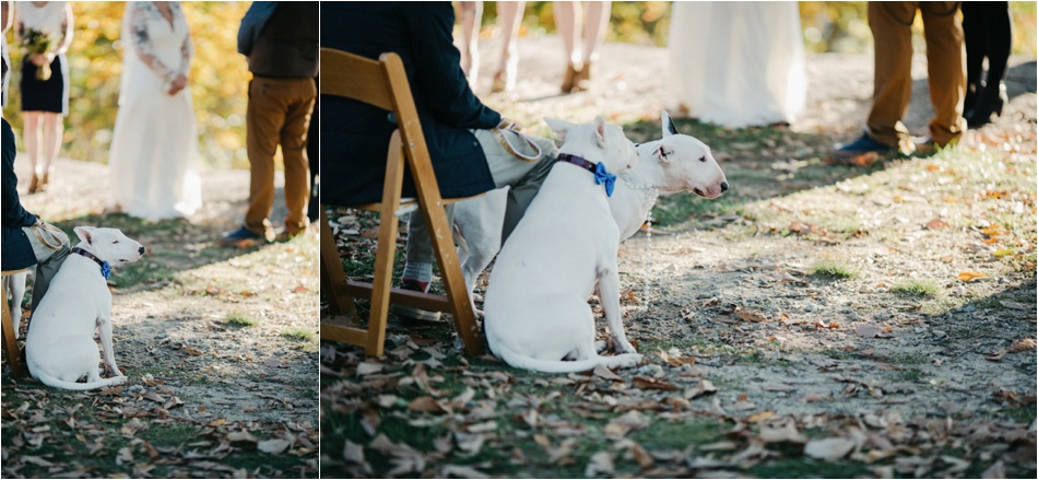 jump-off-rock-hendersonville-wedding-photographers47.jpg