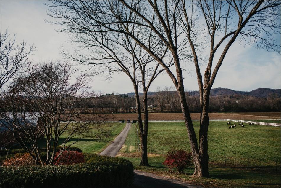 craggy-asheville-elopement-michelle-carl2.jpg