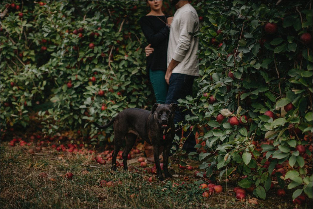 juliet-kail-wnc-apple-orchard-asheville-engagement_0008.jpg