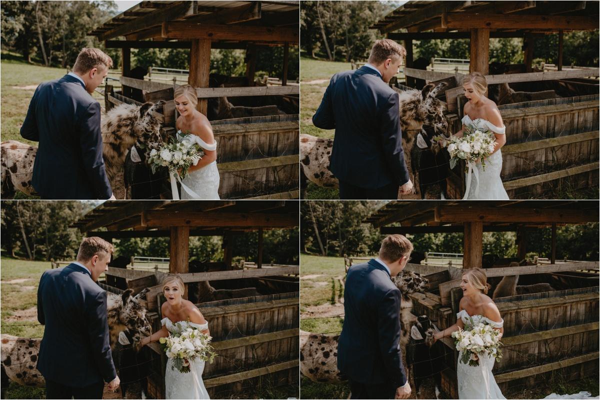 claxton-farm-summer-intimate-wedding-asheville_0060.jpg