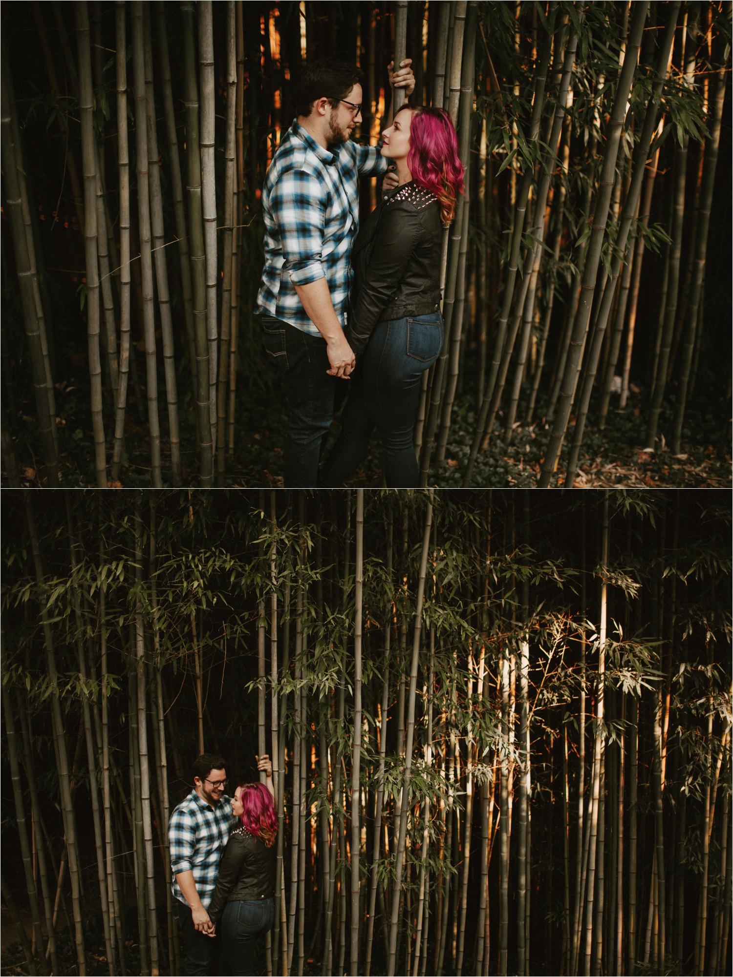 biltmore-estate-autumn-engagement-13.jpg
