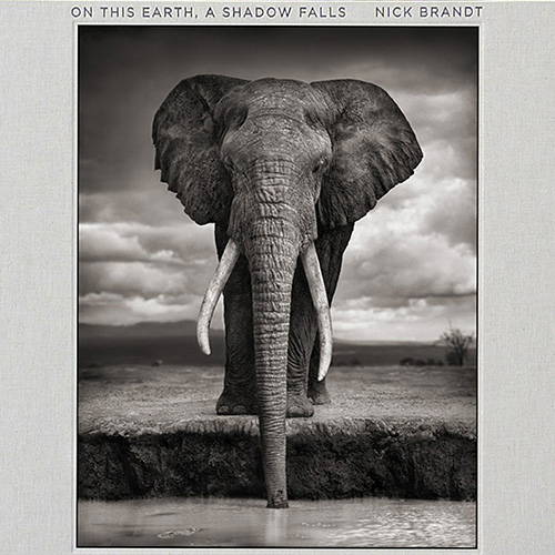 Nick Brandt - On this Earth + A Shadow Falls