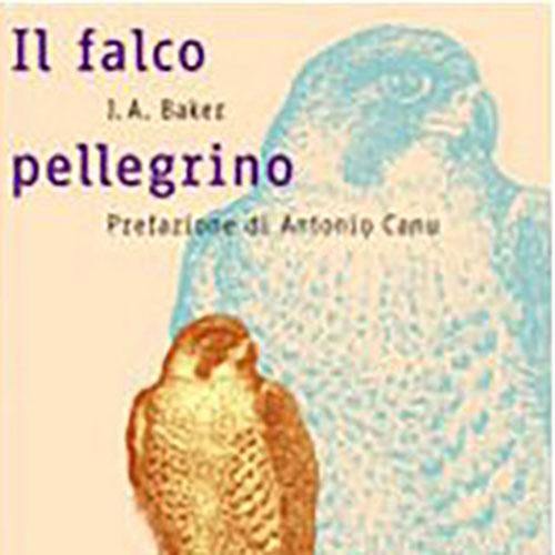 J.A. Baker - Il falco pellegrino