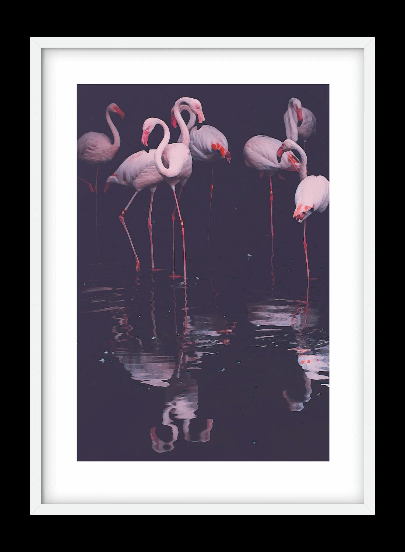1100x1500-flamingos+white-frame.png