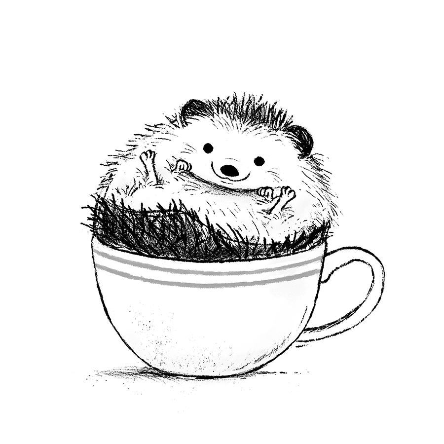 Hedgehog sitting in a tea cup illustration by Chris Chatterton