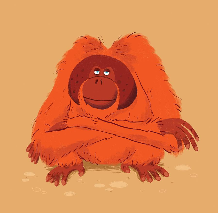 Orangutansitting illustration by Chris Chatterton