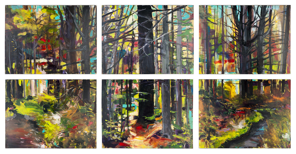 Coordinates 10'x5' 6 panels acrylic on canvas