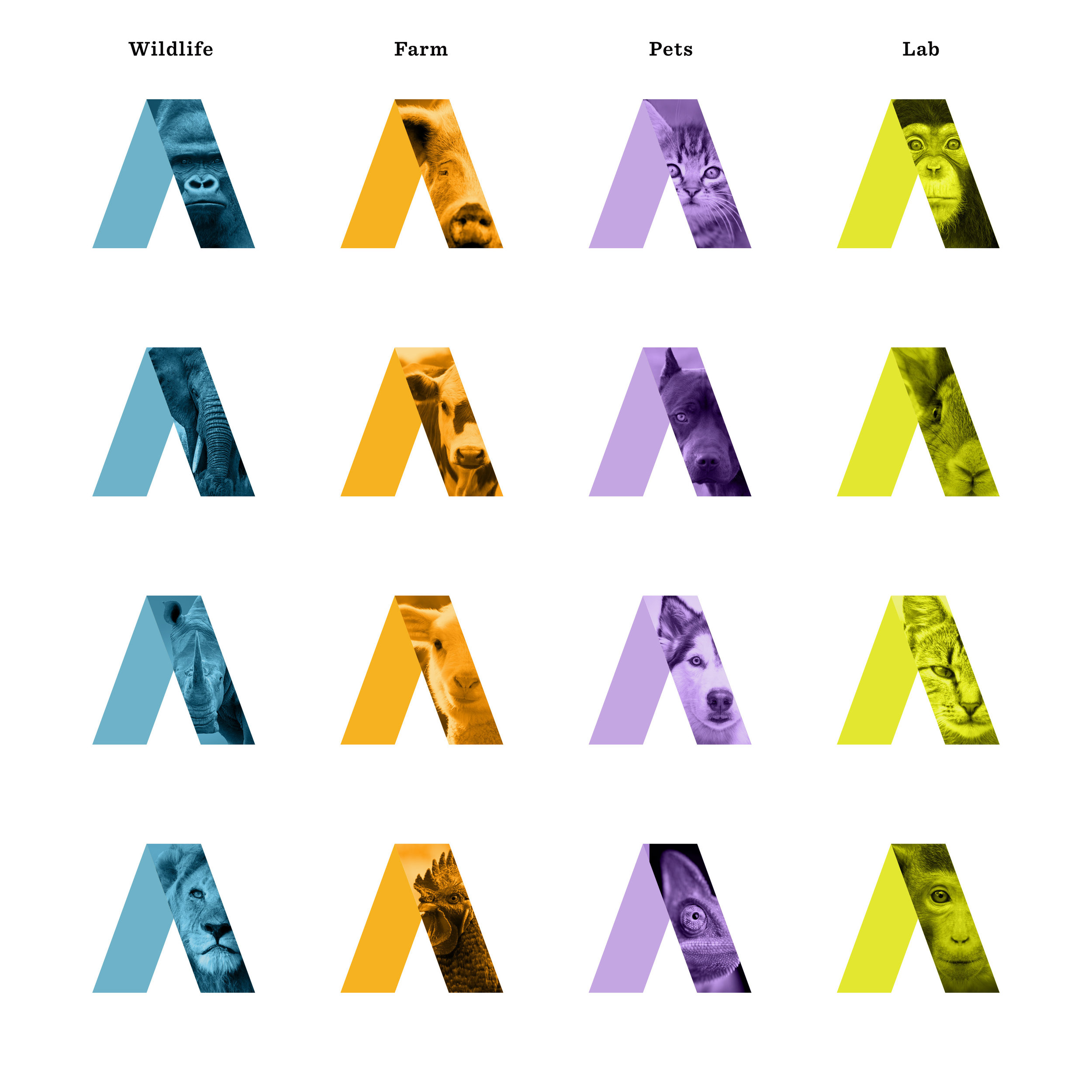Animal-Matters-Color-Brand-Design-Farm-Lab-Wildlife-Pet-Logo-Icons-2A.jpg