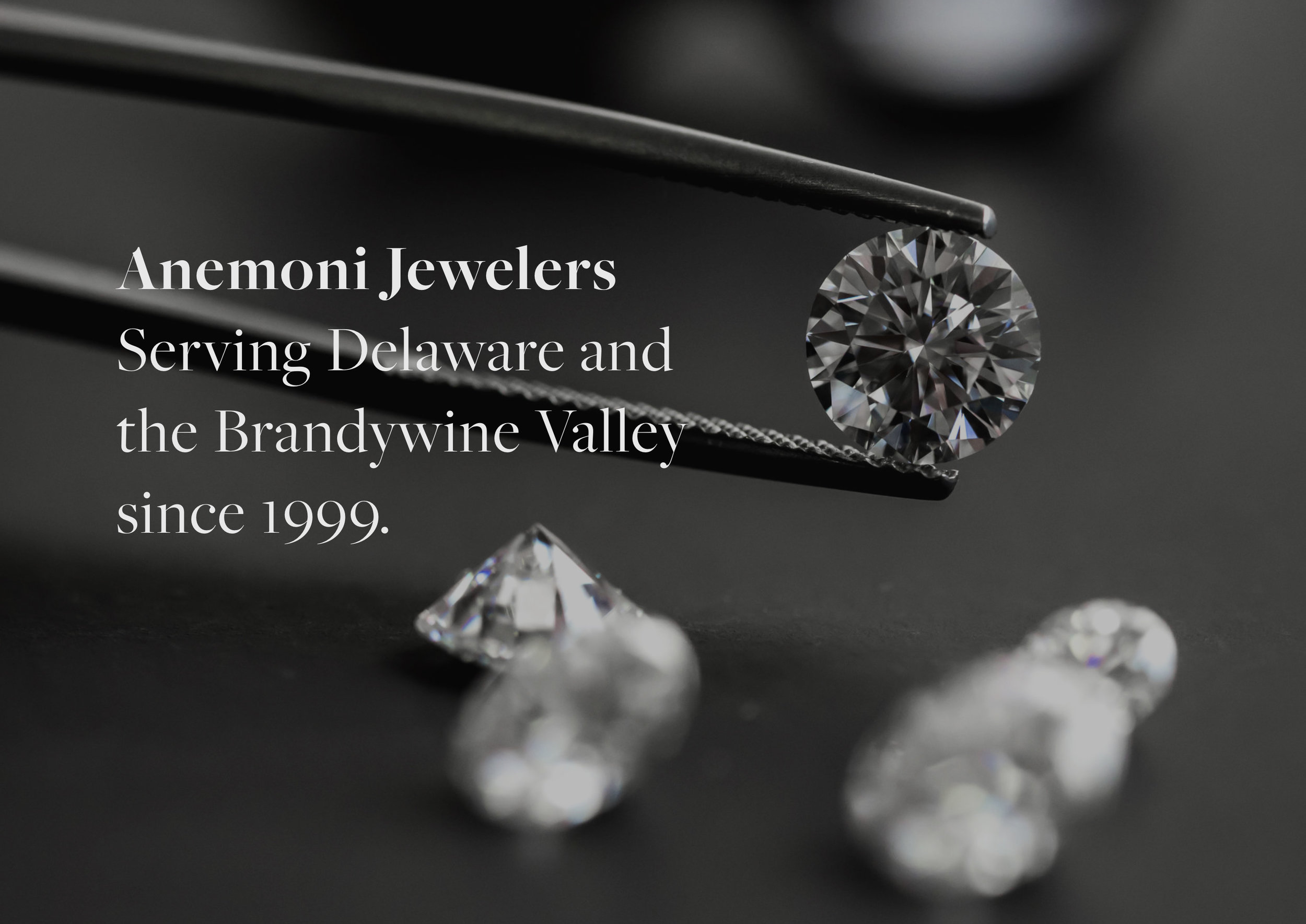 Anemoni-Jewelers-Homepage-Web-Title-Design.jpg