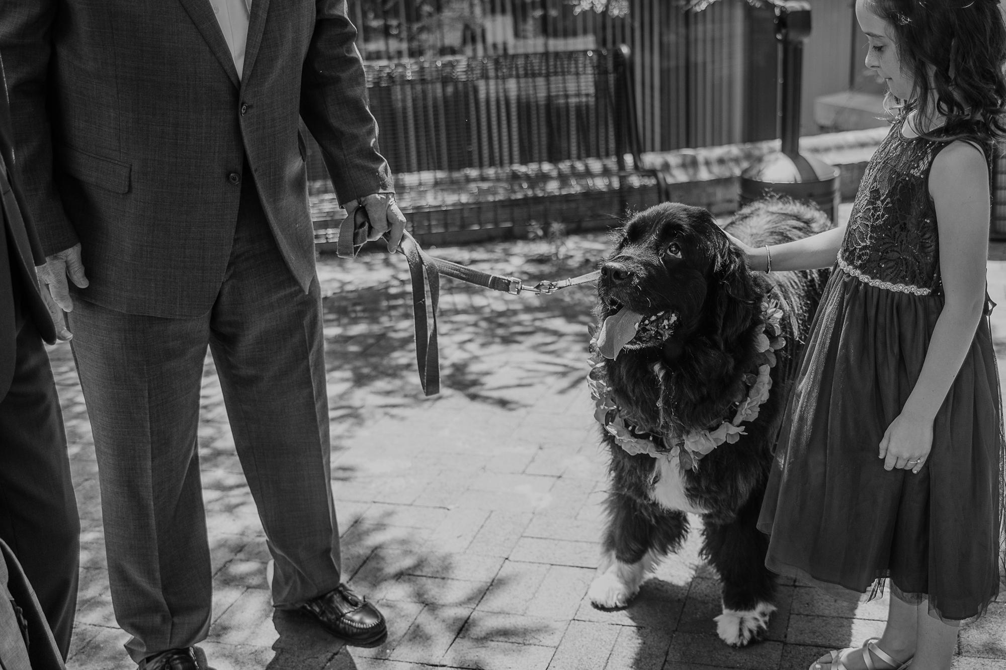 034-annapolis_courthouse_wedding.jpg