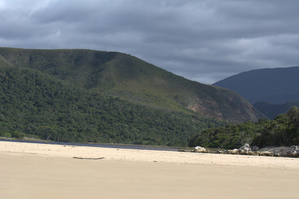 Eastern Cape forest to beach (1).jpg