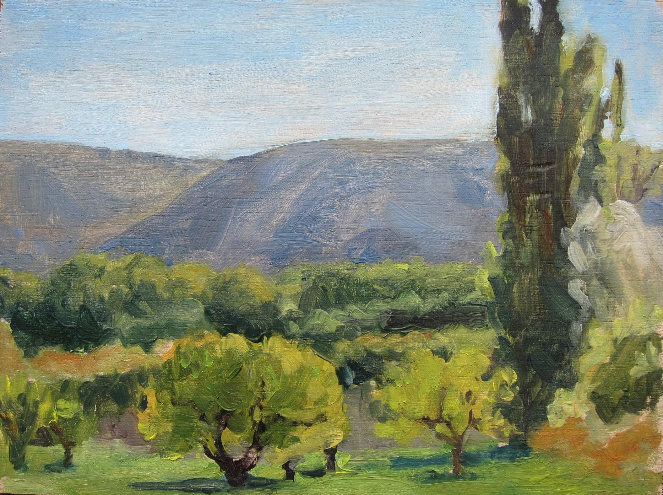 landscape (25).JPG