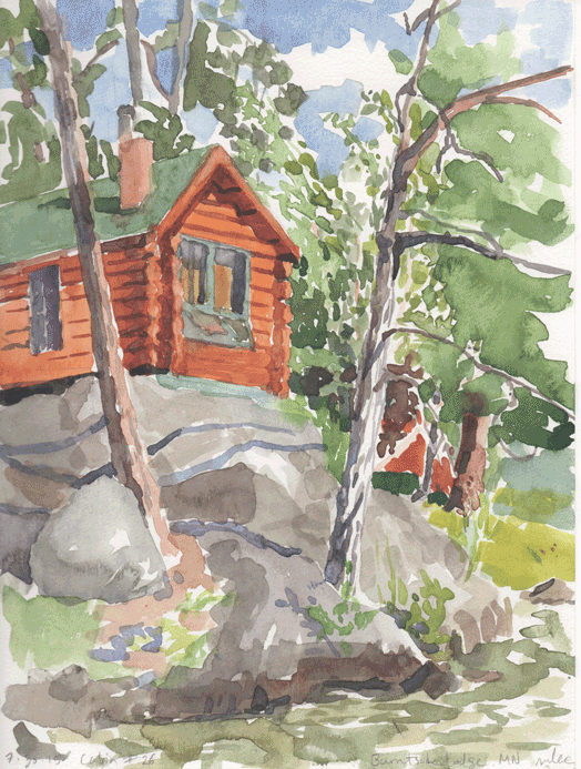 2015-07-30-Cabin-26-resize.png