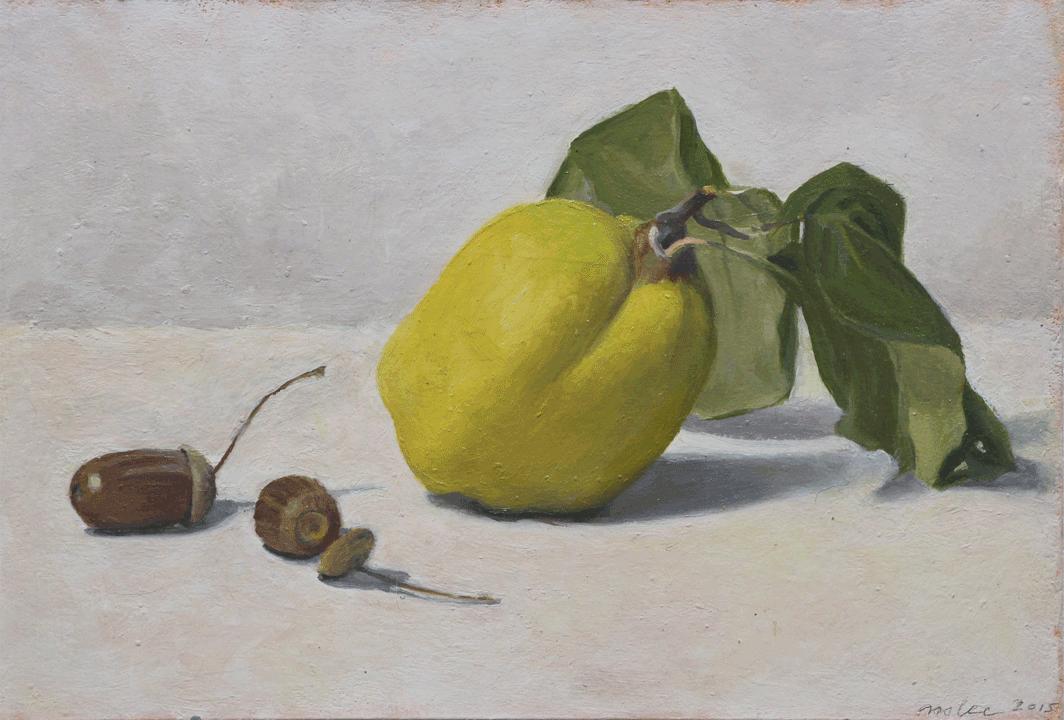quince-acorns.png