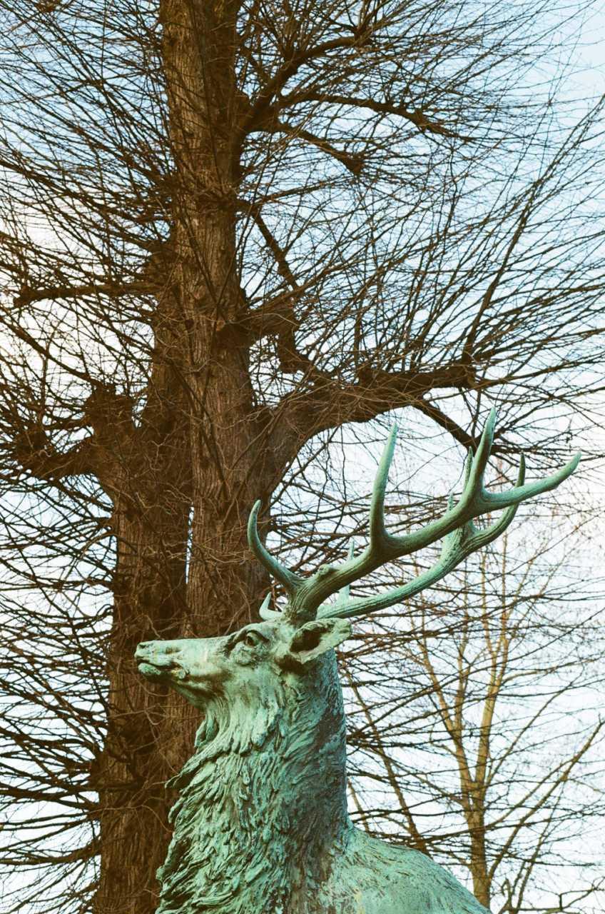 Statue in Kongens Have.jpg