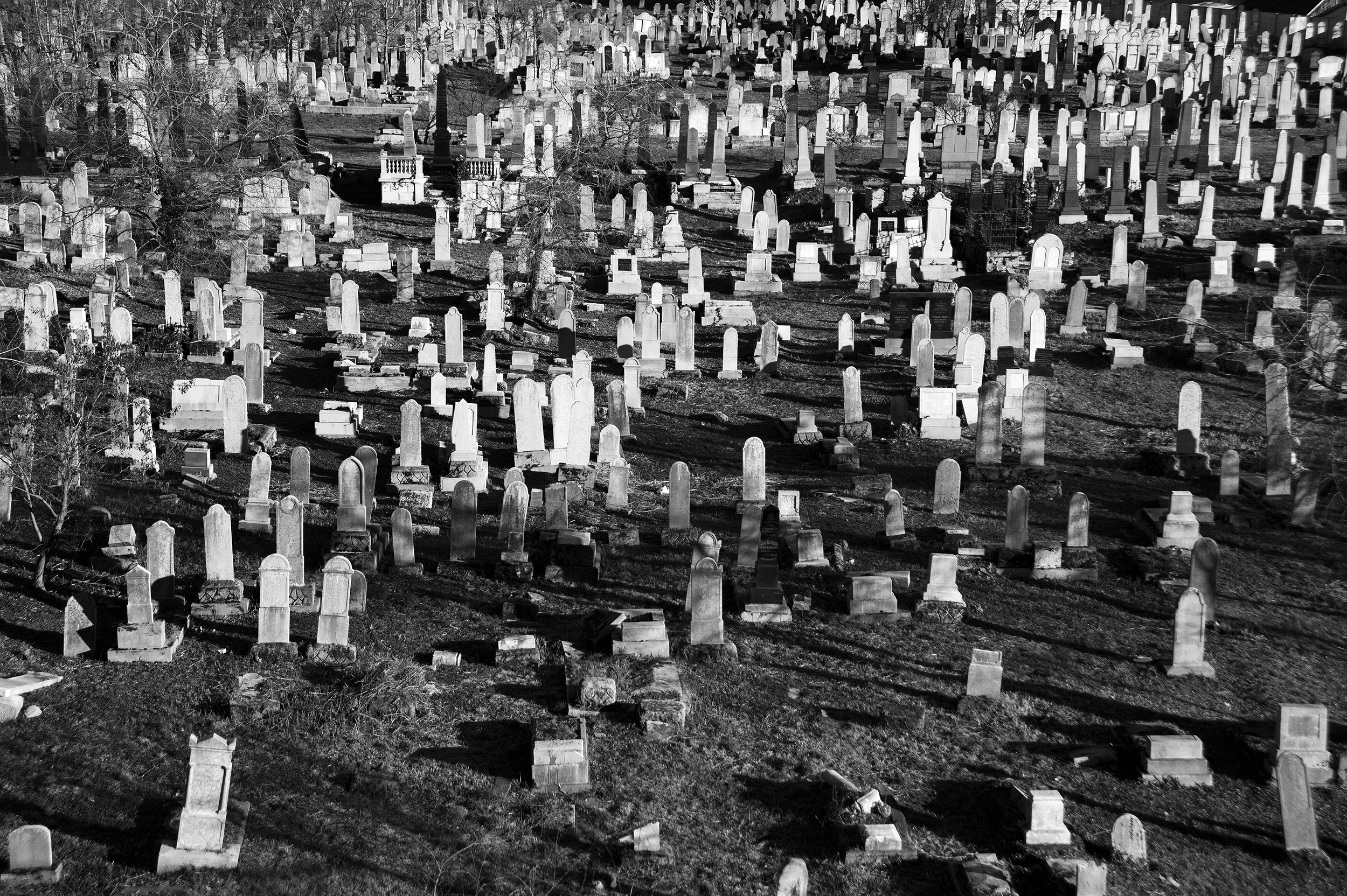 The Jewish Orthodox Cemetery in Velenta, situated in eastern Oradea, sets inactive since 1952 and holds around four thousand graves; January 13, 2015. The oldest Jewish cemetery in Oradea, some of the tombstones predate the 19th century and most are falling into disrepair.