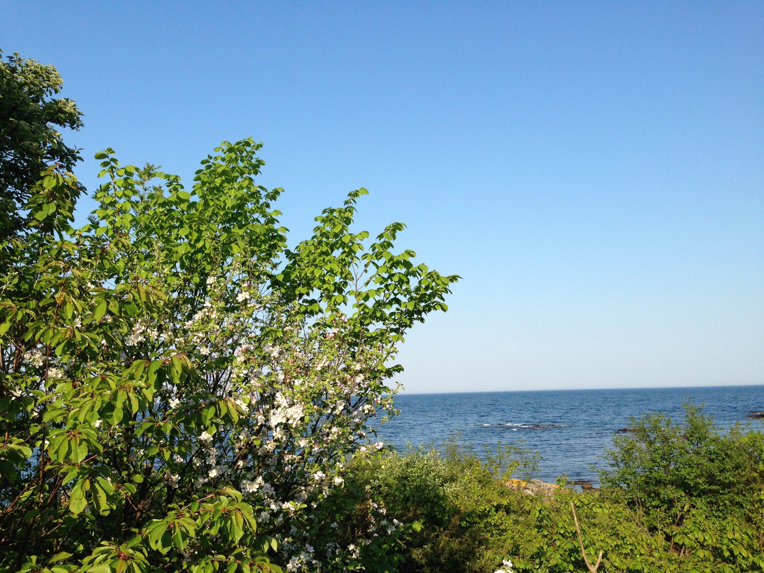 fred og ro stranden 3.JPG