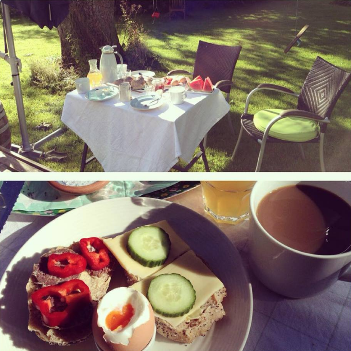 Morgenmad i haven