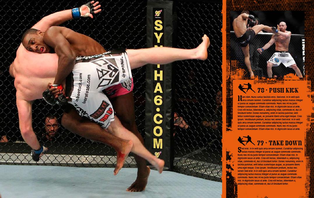 UFC–interiorideas-5.jpg