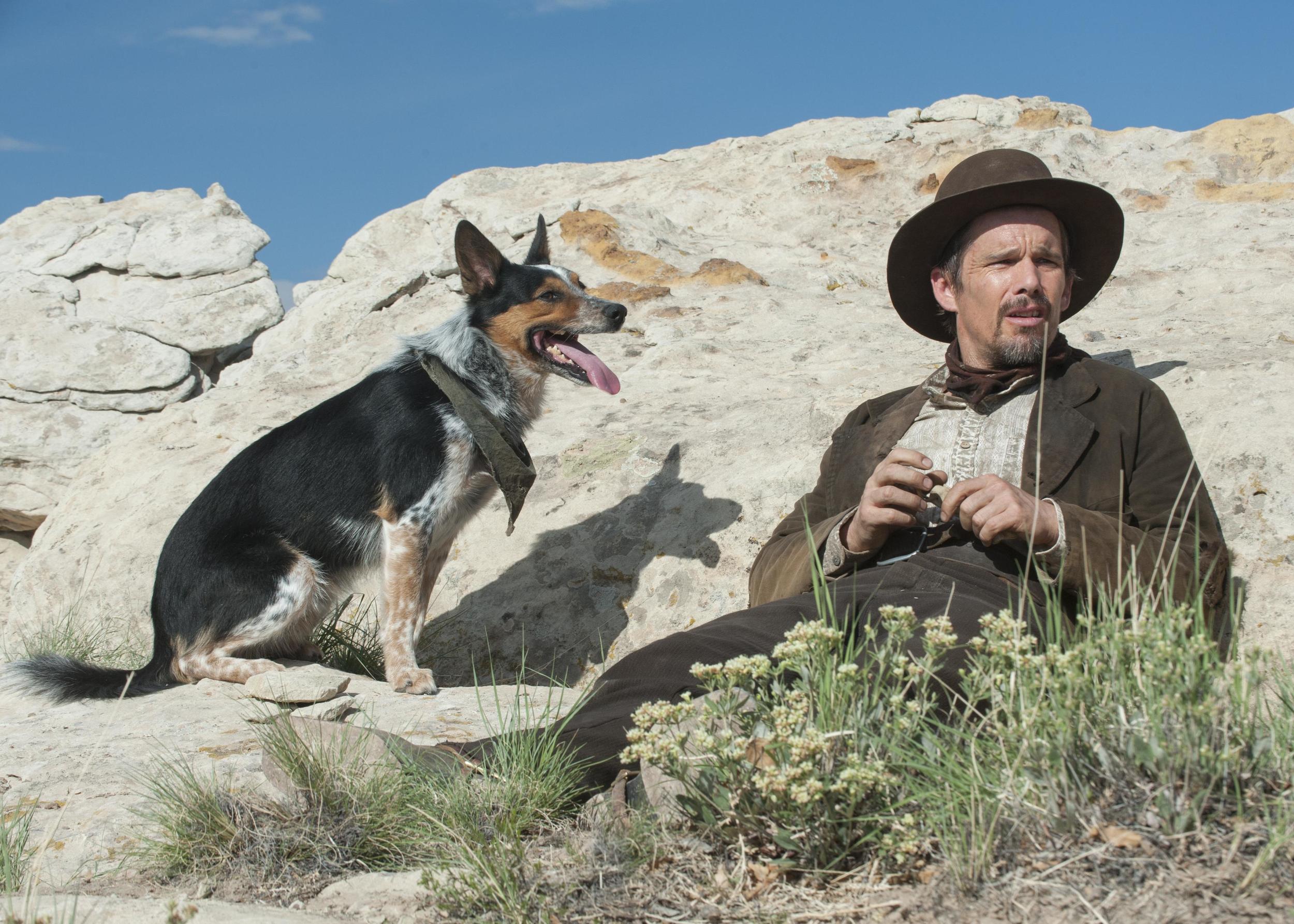 (Image: movies.blog.austin360.com)