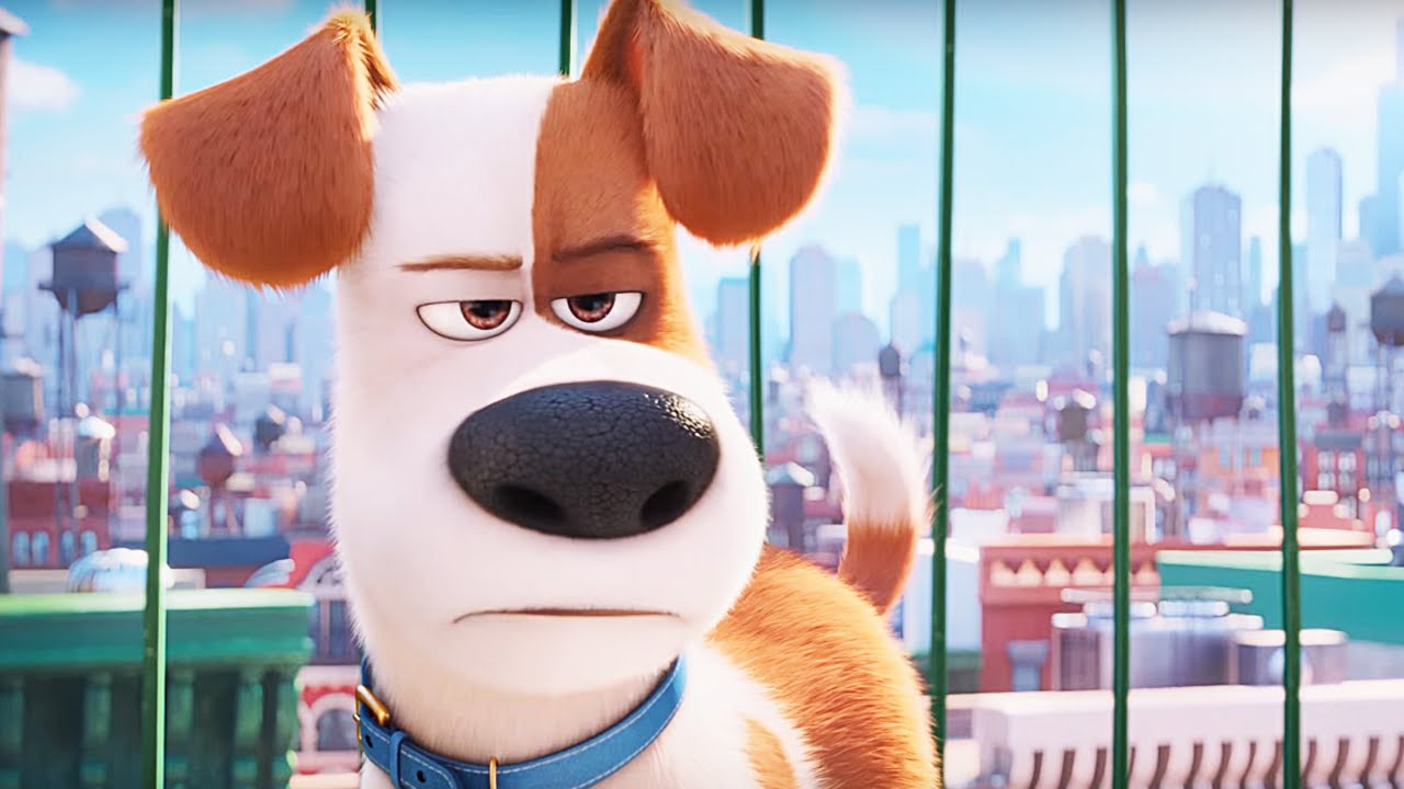 Movie Review The Secret Life Of Pets Every Movie Has A Lesson
