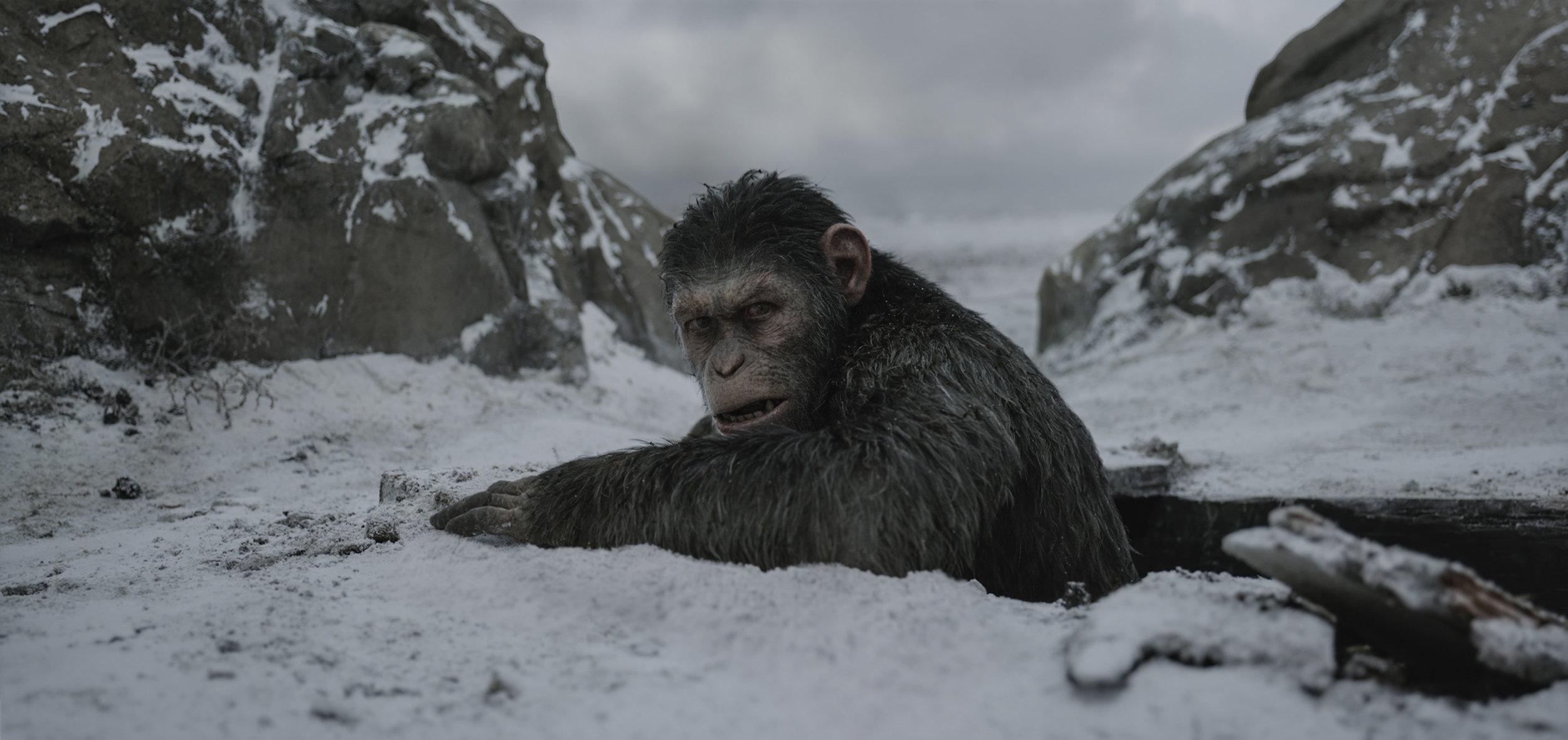 (Image courtesy of 20th Century Fox via EPK.tv)