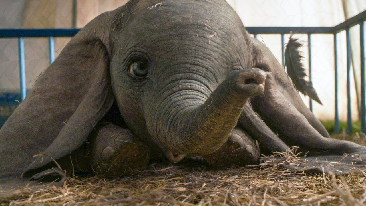 MOVIE REVIEW: Dumbo — Every Movie Has a Lesson