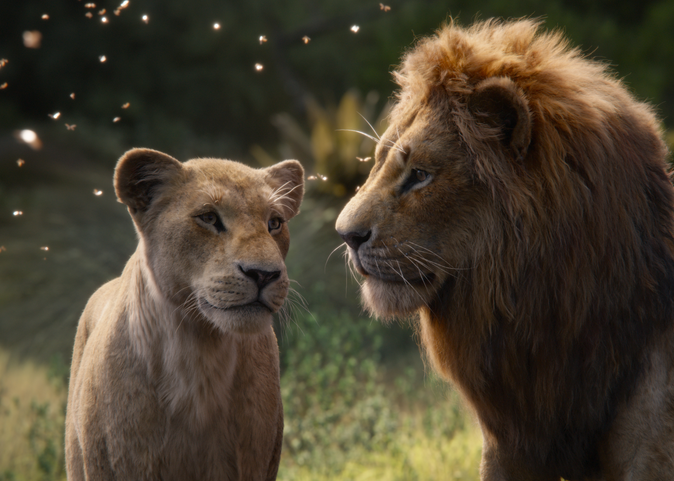 MOVIE REVIEW: The Lion King — Every Movie Has a Lesson