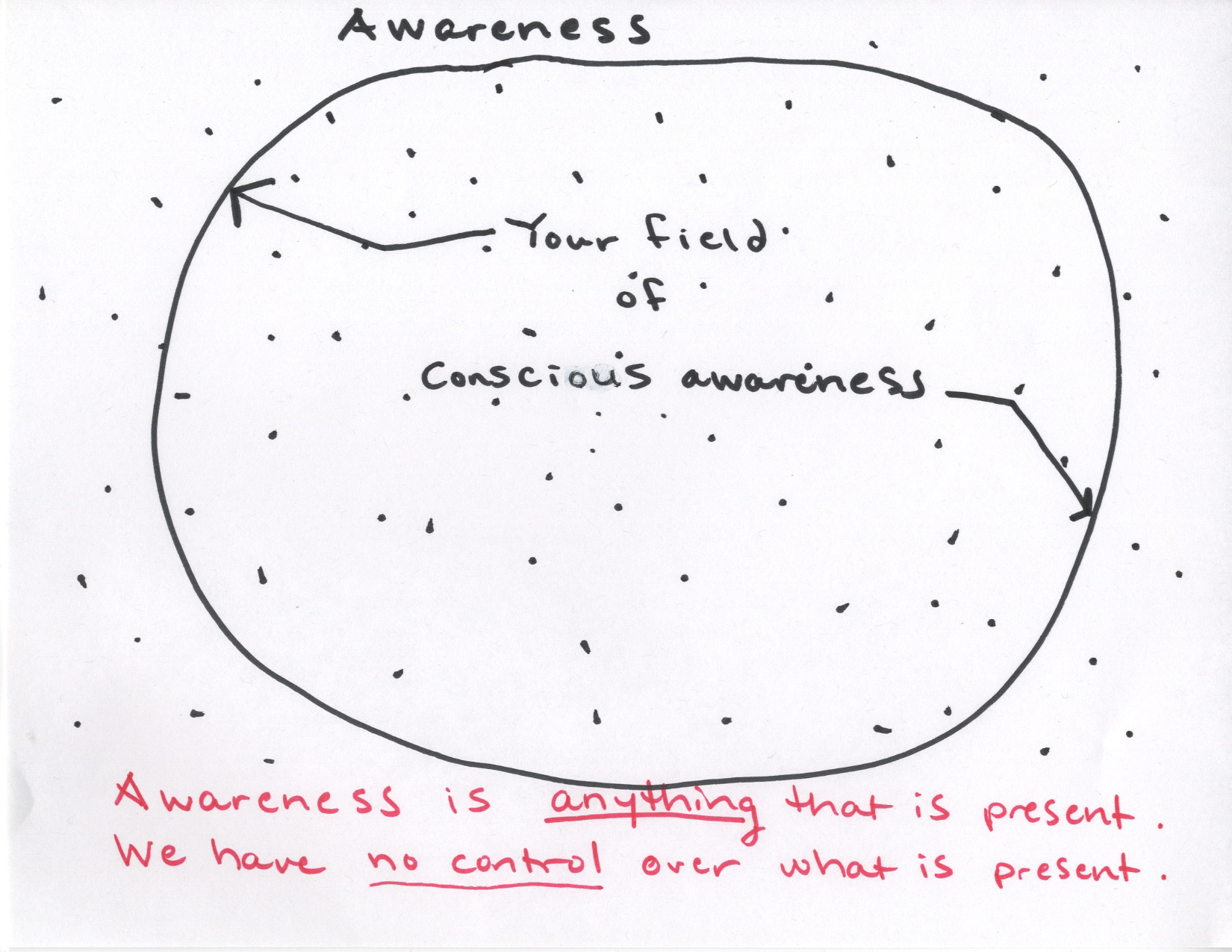 FieldofConsciousAwareness.jpg