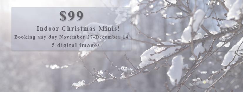 Pittsburgh Indoor Christmas Mini 2017.jpg