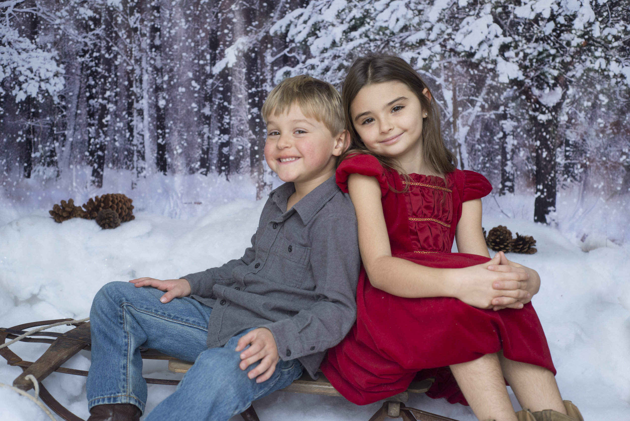 Pittsburgh Photographer Christmas Studio Mini Session