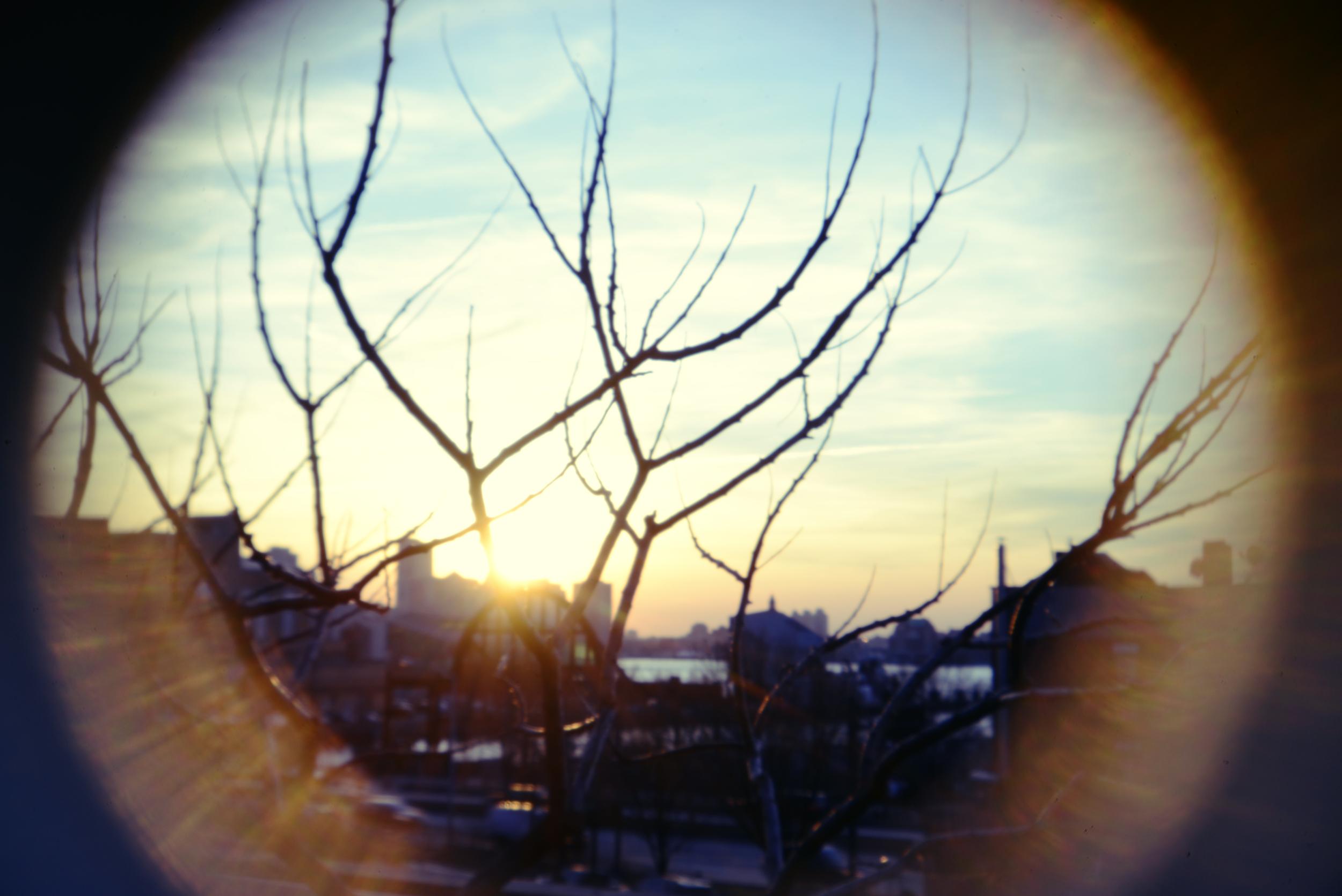 NYC highline holga lens2.jpg